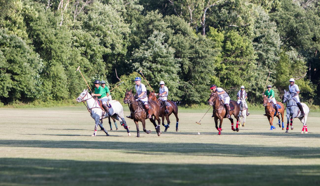 day at summerhill polo 33 - A day at Summerhill Polo